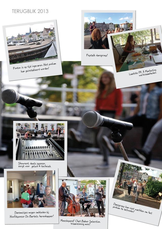 Midsummer 2013 collage_0